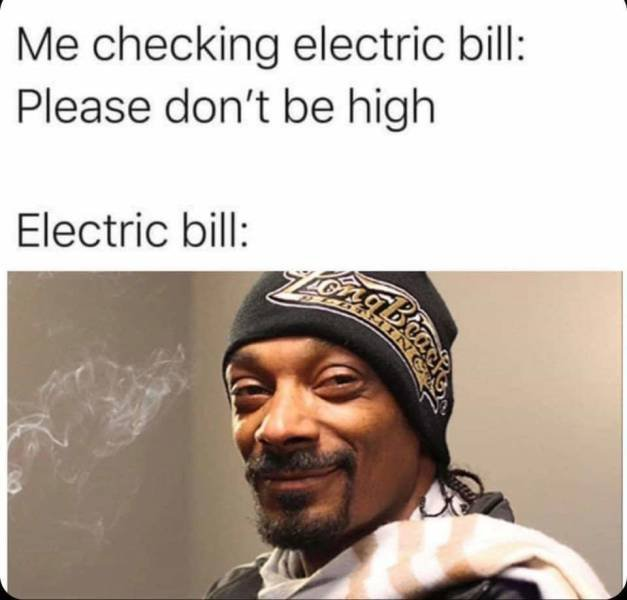 NutBull-Me checking electric bill